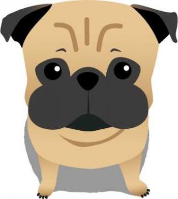fawn-pug-lookup_l
